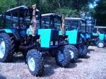 Трактор Беларус МТЗ-82.1